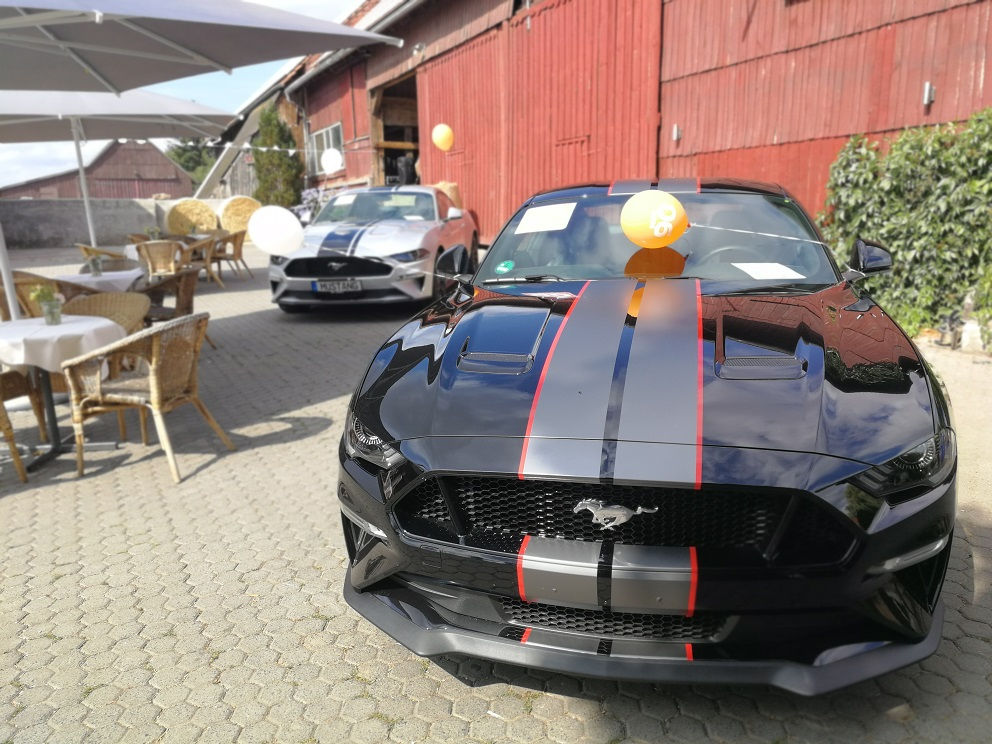 Mustang vor der großen Scheune